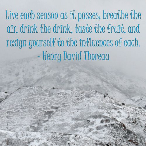the doctrine promoted by henry david thoreau in an essay