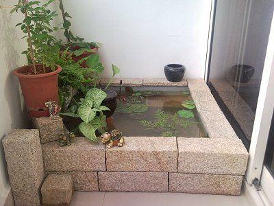 Σε εσωτερικό χώρο με υδρόβια φυτά
