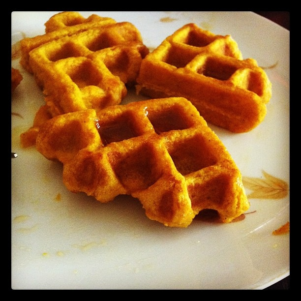 Waffles: 1.5 c GF Bisquick, 1/2 can pumpkin puree, 1 egg, pumpkin pie ...