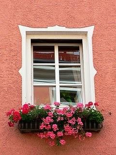 rózsaszín ház, színes virágokkal