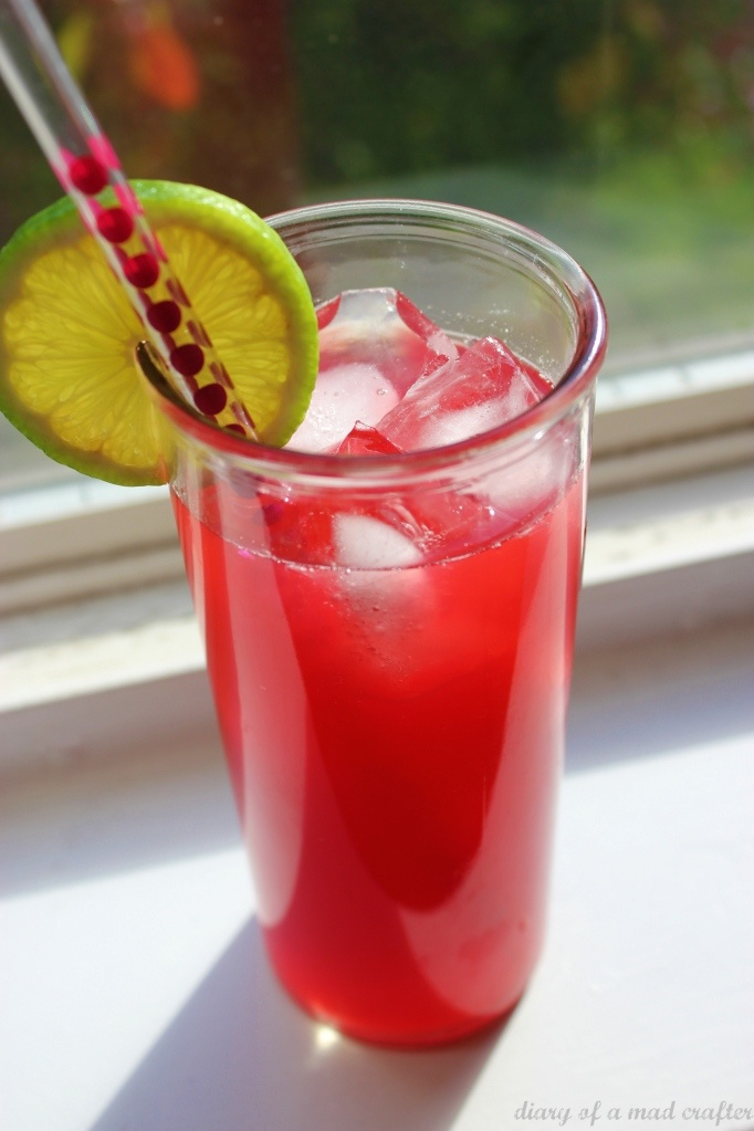 Hibiscus Ginger Nectar | Alcohol Free Drinks | Pinterest