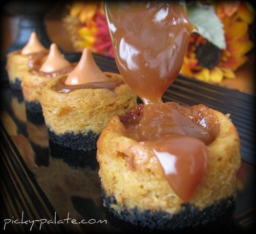 Black Bottomed Mini Caramel Pumpkin Cheesecake Bites yes this just ...
