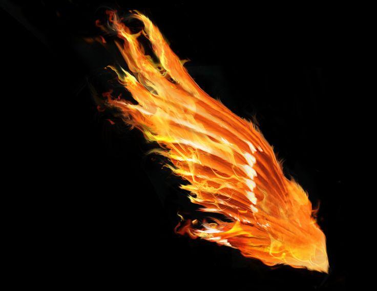 Phoenix Wing | Black is Back | Pinterest