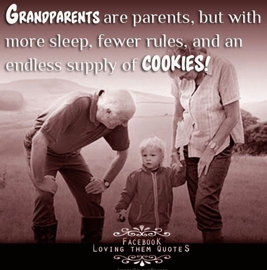 when is grandparents day celebrated in india