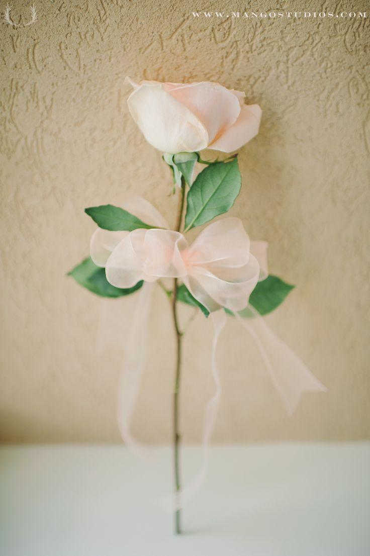 Single rose bouquet flowers pinterest for One flower bridal bouquet
