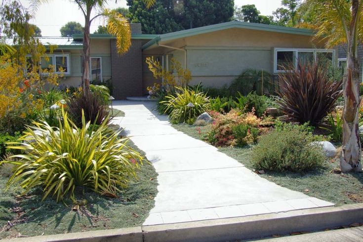 Drought tolerant front yard sarah and dave pinterest for Drought tolerant front garden designs