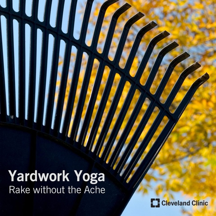 This #fall rake the #leaves without the ache!  Quick stretches to save your back.  #back #pain #ache #stretches