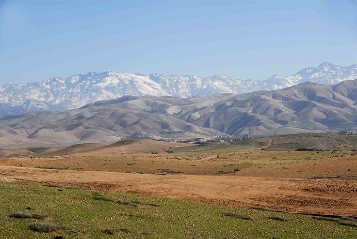 mountains beyond mountains essay help