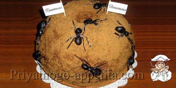 Как украсить муравейник в домашних условиях фото