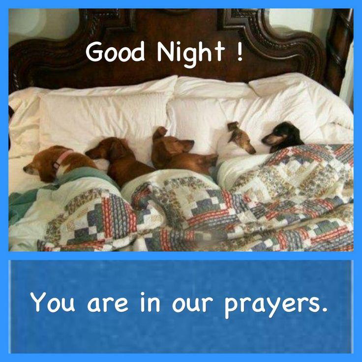 Good night all.