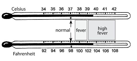Fever in celsius adults was