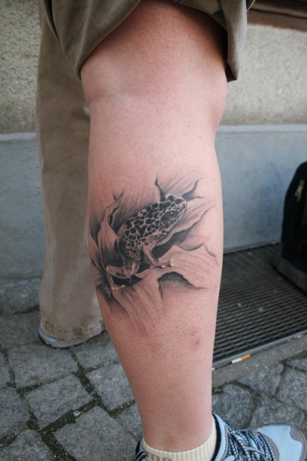 Poison arrow frog tattoos pinterest