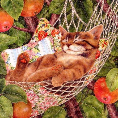 Image result for Sleeping Kitten Art