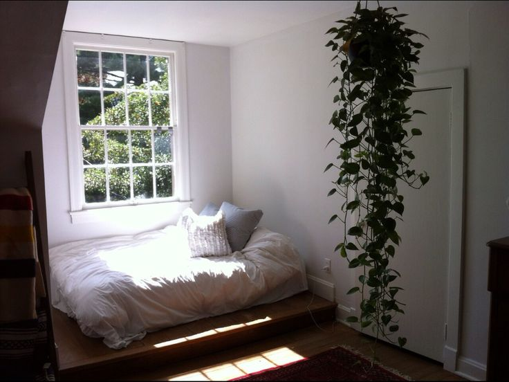 Hanging Plant Bedroom