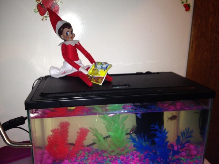 Elf on the shelf | Elf on the shelf ideas | Pinterest