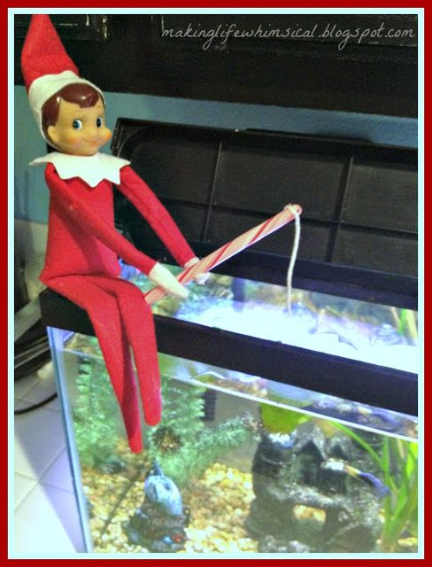 fishing in the fish tank Things 4 ELF ON THE SHELF Pinterest
