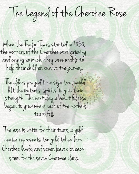 Quotes About The Chero... Dreamcatcher Poems