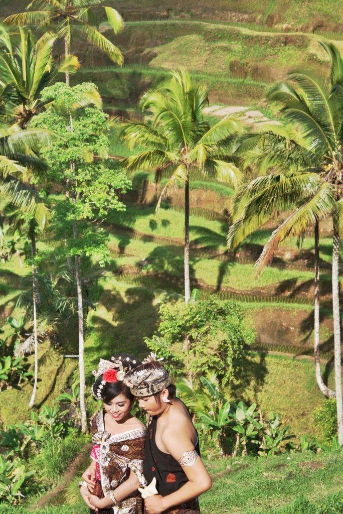 Jatiluwih Terraced Rice Fields
