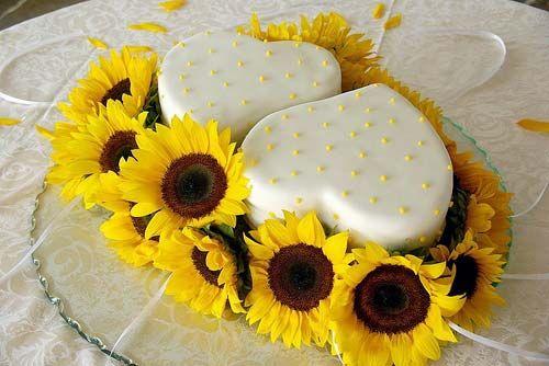 Sunflowers and cake
