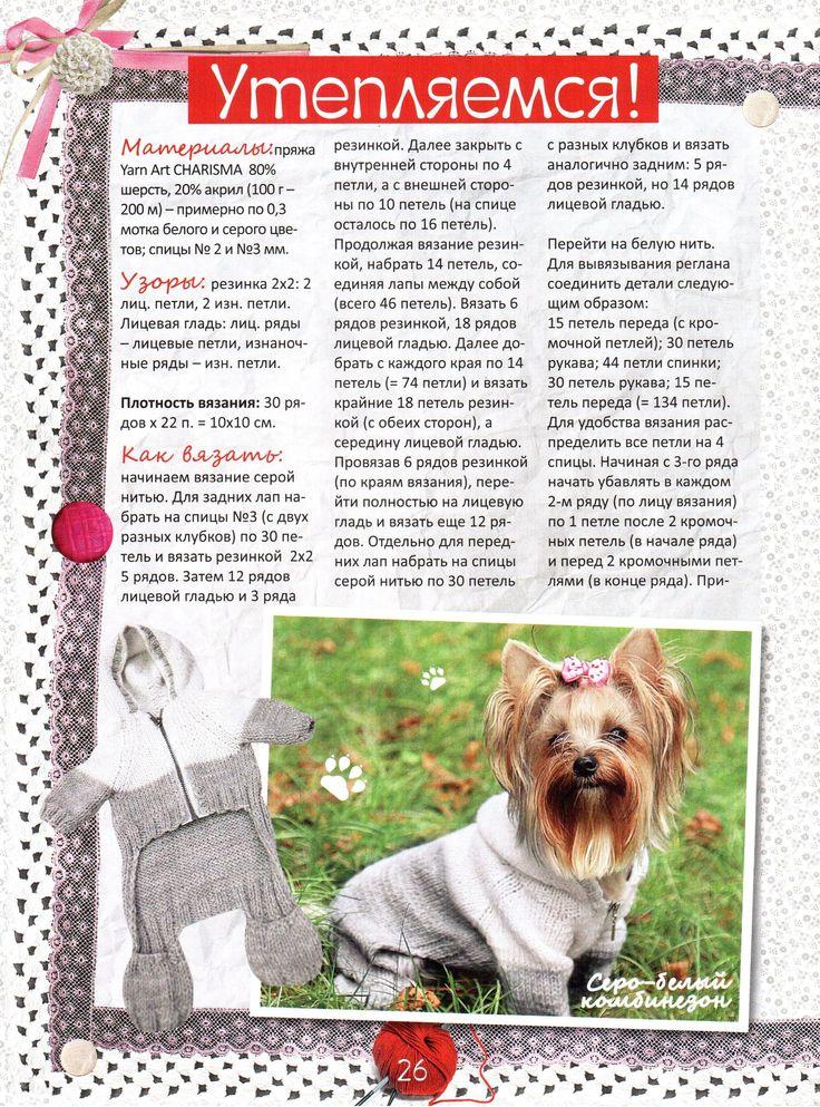 Вязание собакам йоркам