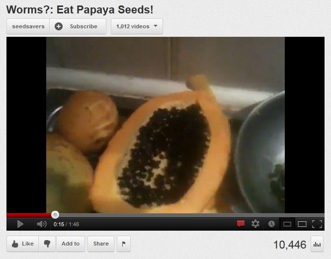how to eat papaya seeds for parasites