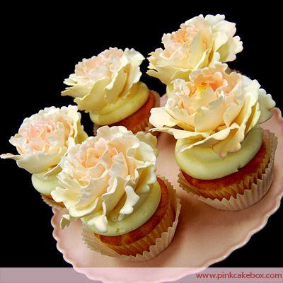 Peony Cupcakes by Pink Cake Box