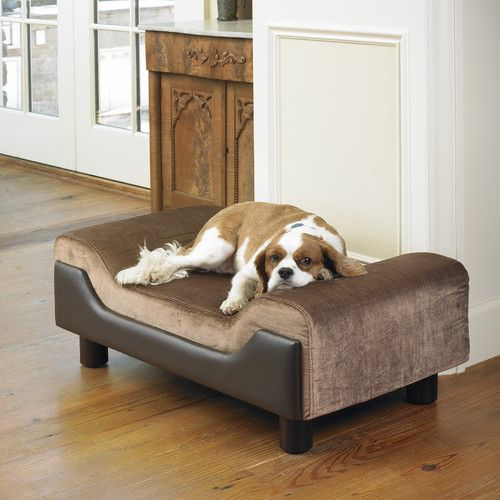 Pin By Shamim Rajabali On Dog Beds That Look Like Furniture Pintere