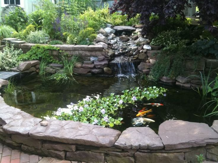 Koi pond above ground house of fishery lovers for How to build a koi pond above ground