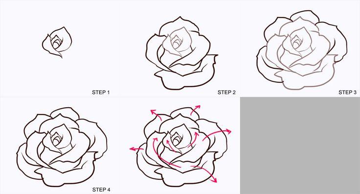 Как нарисовать чёрную розу поэтапно