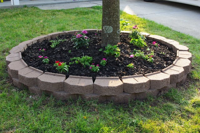 Landscaping Ideas For Flat Front Yard : Curb appeal yard and garden