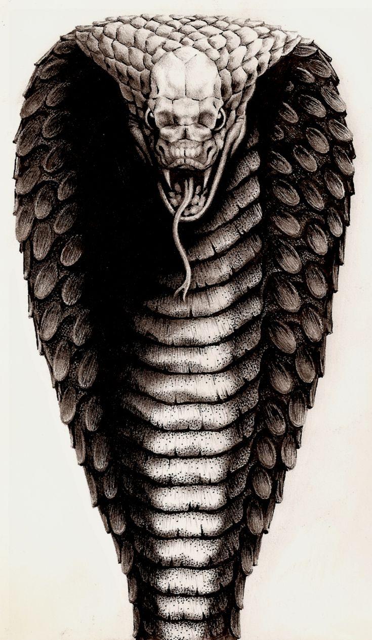 King cobra head tattoo