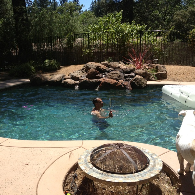 Beautiful Backyards Without Pools : Backyard pool AND a firepit! How perfect!!