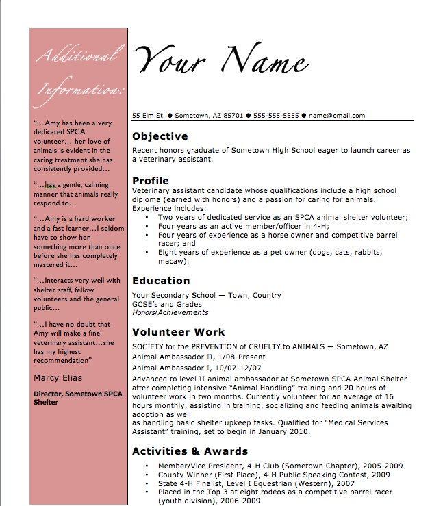 Pet Shop Assistant CV Writing Service CV Advice - dinocroinfo