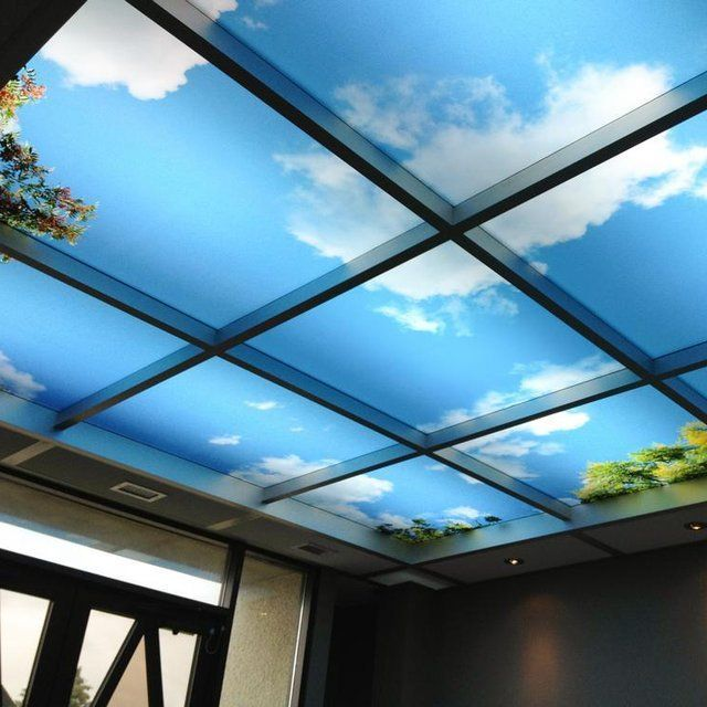 Sky mural ceiling panels arch details pinterest for Ceiling mural ideas