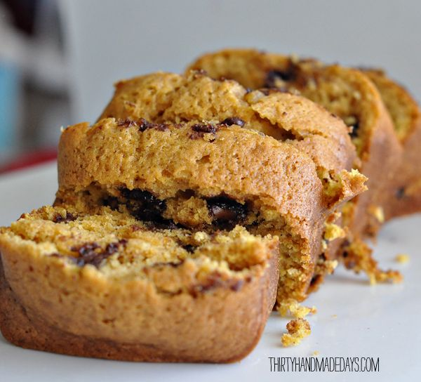 chocolate chip pumpkin bread | Bread, YUM | Pinterest