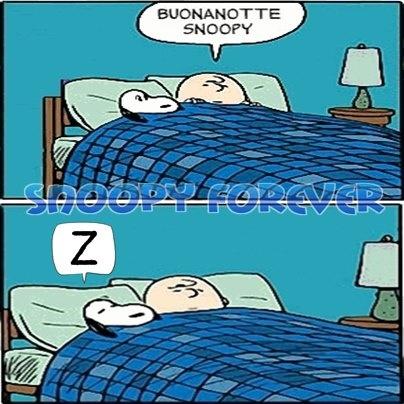 Buonanotte snoopy facebook wroc awski informator for Buonanotte cartoni