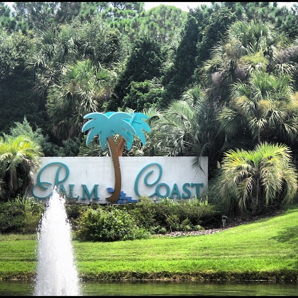 Palm Coast, Florida | Palm Coast ,Florida | Pinterest