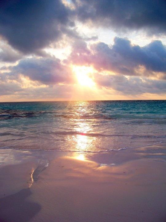 Pink sands beach harbour island bahamas cool sp ces for Pink sands beach in harbour islands