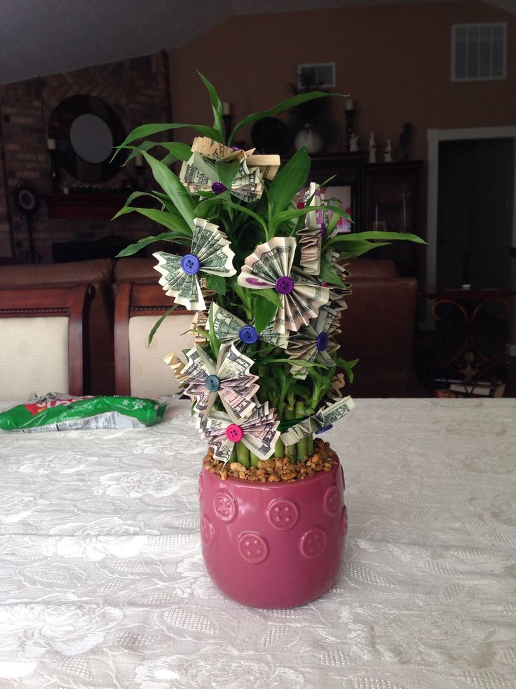 Money tree great idea for birthdays retirements etc what a cool