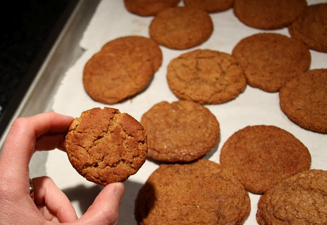 Whole Wheat Snickerdoodles! | Recipes - cookies (biscuits) | Pinterest