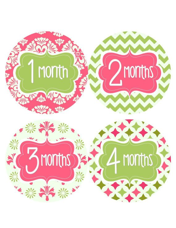 Monthly Baby Stickers Baby Monthly Stickers Hot Pink Green