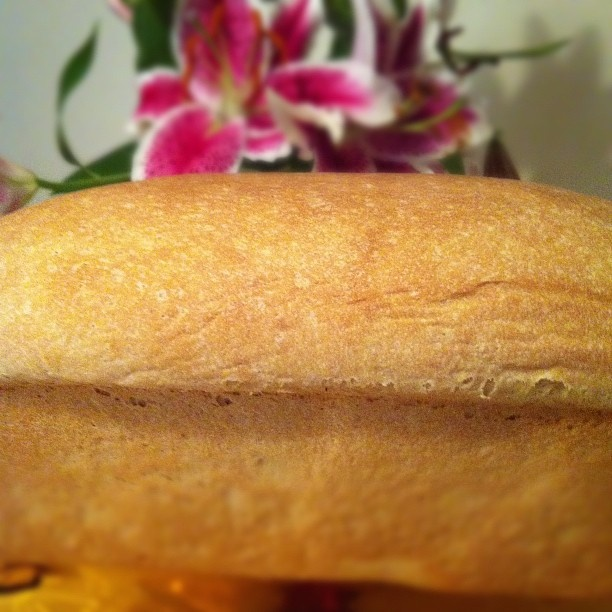 super simple bread recipe that turns out great every time!