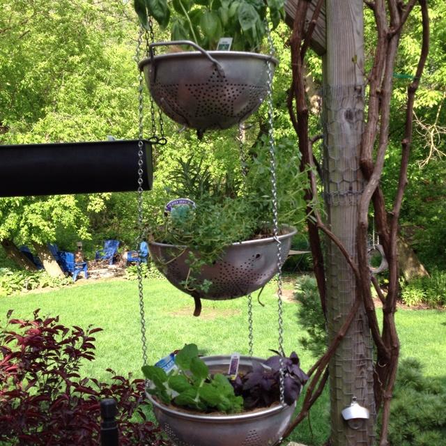 Hanging herb garden home outdoor spaces pinterest