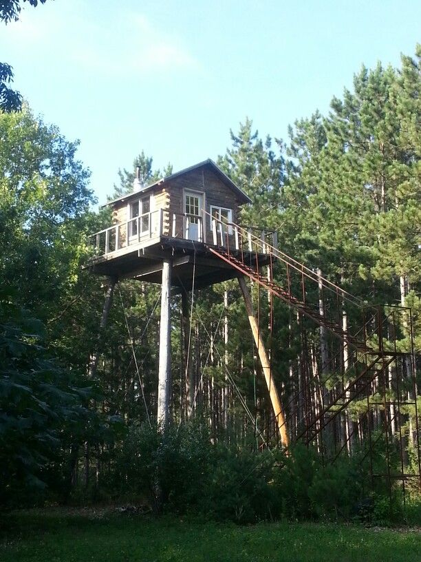 Deer stand for shelby pinterest for Enclosed tree stand designs