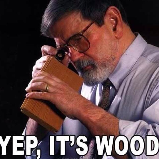 Yep, it's wood!