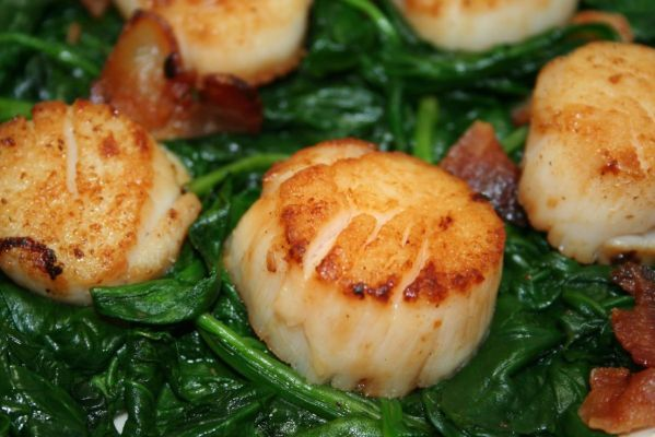 SEARED SCALLOPS WITH SPINACH AND BACON