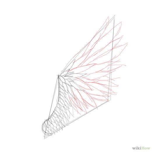 how to draw angel wings step by step easy