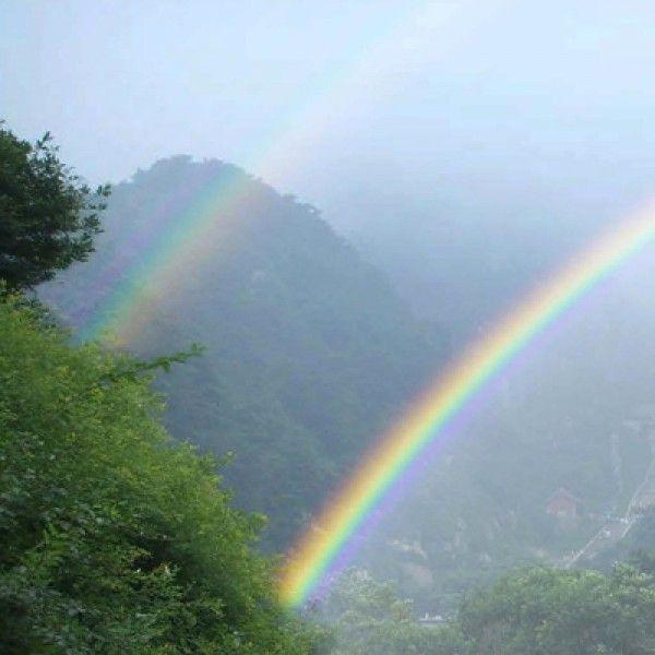double rainbow shots double rainbow cake jelly shot double rainbow
