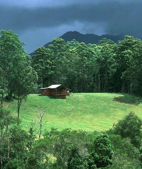 Bellingen Australia  City new picture : Promised Land Cottages in Bellingen NSW   Australia   Pinterest