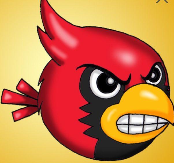 Angry Cardinal | University of Louisville | Pinterest